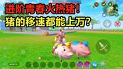创造与魔法:进阶完全体青春火热猪!猪的移速都能上万了?